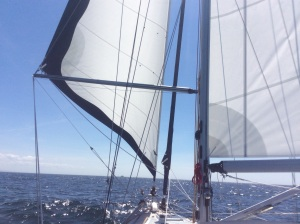 Goose-winged sails