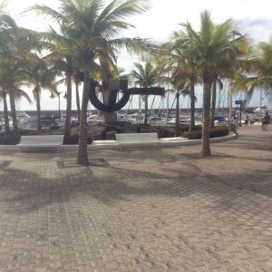 Palm trees at Puerto Calero