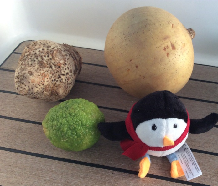 Puffa penguin with an apricot ( believe it or not) a Dasheen and a lemon